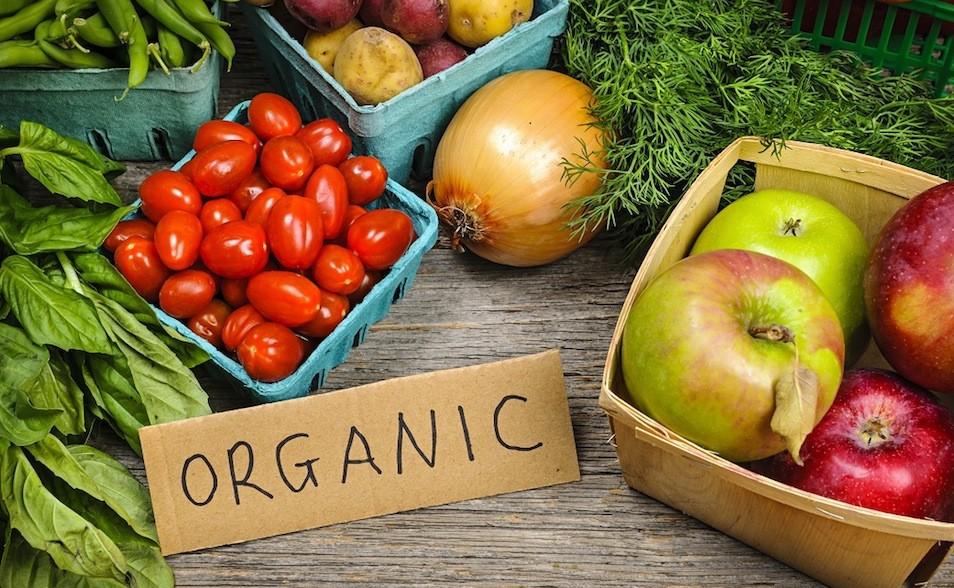 Pourquoi se tourner vers l'alimentation organique ?